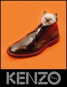 KENZOの経歴